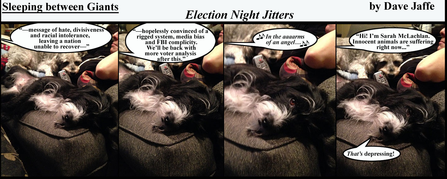 election-night-jitters-final-final-final