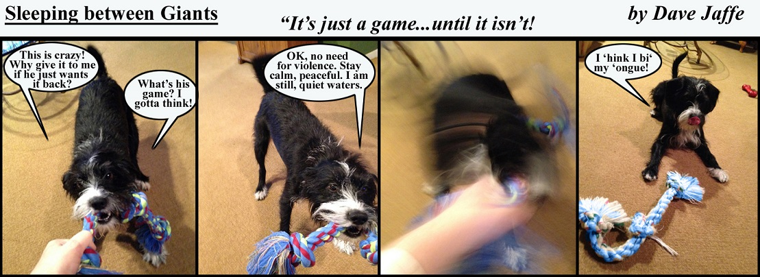 It' just a game final-strip-8x22-with-titles-and-dialogue-final-final-reduced