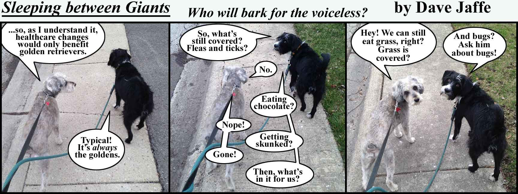 Who-will-bark-for-the-voiceless---FINAL