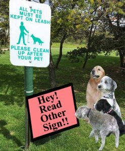 <strong>Unlike their Giants, dogs understand park signage. They just don't care.</strong>