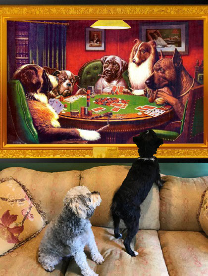 Budgeting for your dogs' needs can be expensive. Especially if they're collectors of fine art.